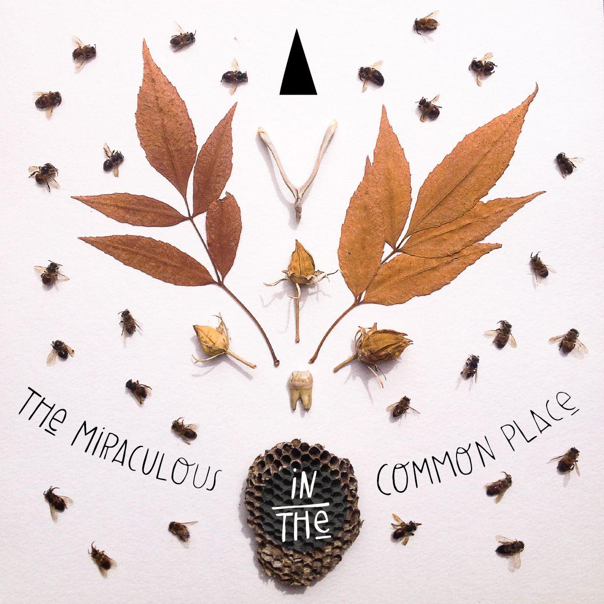 Common-Almanac