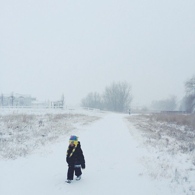 hattie in snow