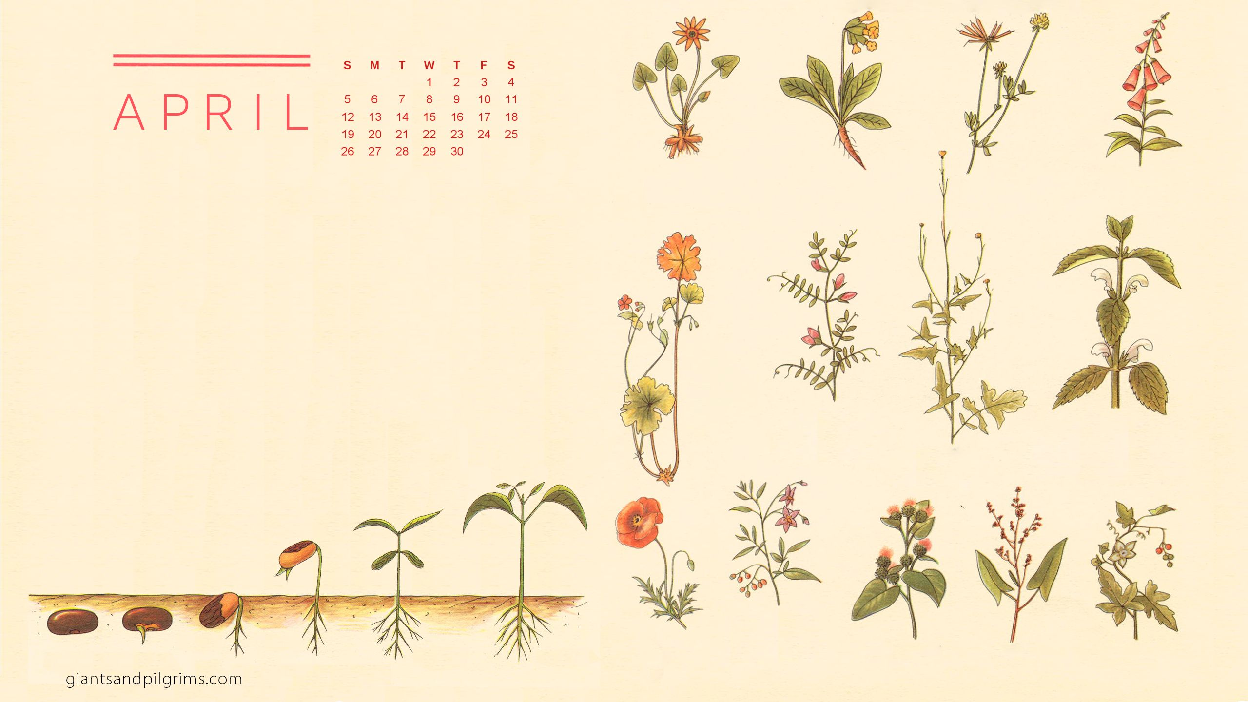 April 2015 Desktop Wallpaper