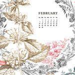 FEBRUARY 2016 desktop_web