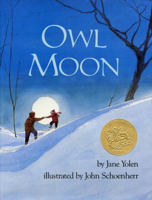 owl-moon