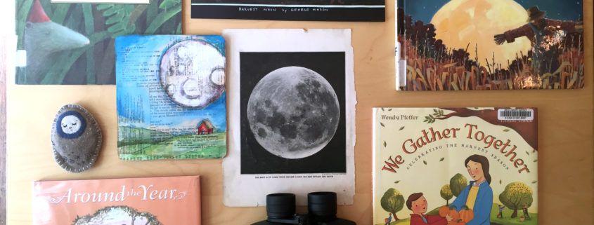 harvest-moon-goodies